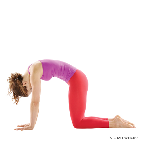 Yoga Poses For Back Pain Erie County Chiropractic